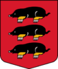 Daugavpils novada Višķu bāriņtiesa Logo