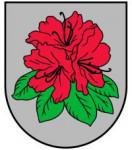 Babītes novada bāriņtiesa Logo