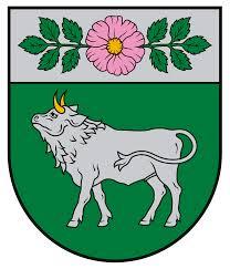 Vārkavas novada bāriņtiesa Logo