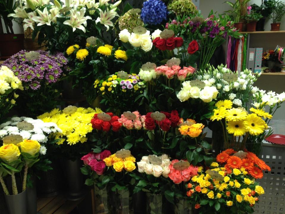 Palete ziedu salons Fotogalerija