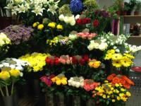 Palete ziedu salons