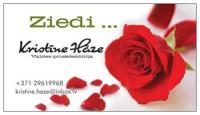 Paradīzes graudi ziedu salons logo