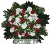 Ziedu Pušķi