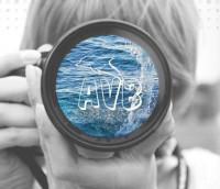 Kodak SIA AVB Disc Soft fotoserviss Logo