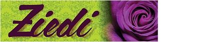 Ziedu akadēmija SIA, Filiāle Логотип