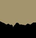 Diana Sveces Logo