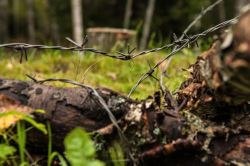 Ložmetējkalns Tīreļpurvā
