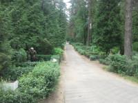 Pļavnieku kapsēta, Ulbrokas kapi