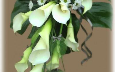 Bēru štrauss - baltas kallas un baltas krizantēmas uz zaļu augu pamatnes ar melnu lentu