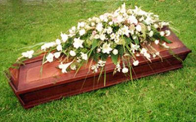 Zārka noformējums Elizete, ziedu galerija