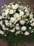 Sēru vainags ar baltiem ziediem bez lentes