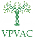 Vecliepājas primārās veselības aprūpes centrs.Morgs Logo