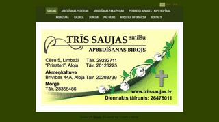 Trīs saujas smilšu, SIA Homepage