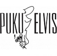 Puķu Elvis SIA, T/C Elvi logo