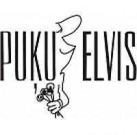 Puķu Elvis SIA, T/C Elvi Ādažos Logo