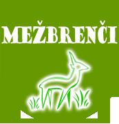 Viesu nams Mežbrenči-Daugmale