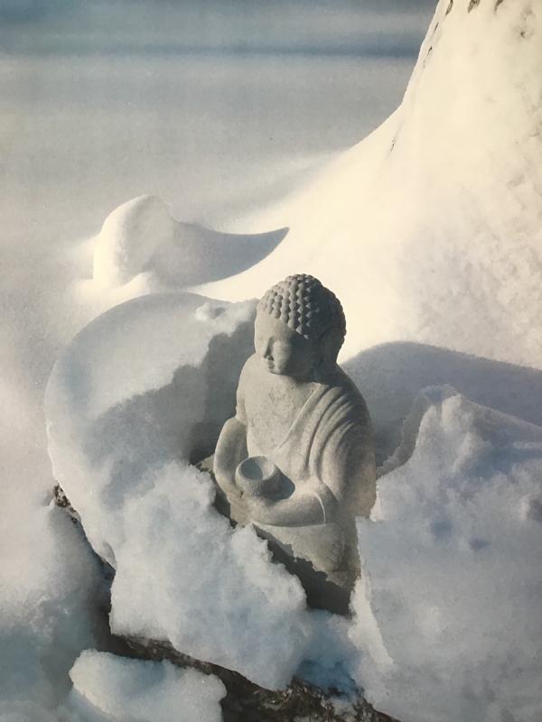 Budda ziemā