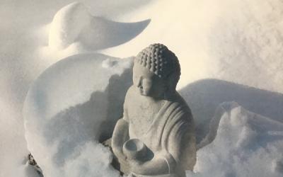Statuja, kas vienmēr labi iekļaujas gan apzaļumotā vidē, gan dabiskā ainavā.