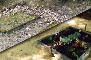 Kā pasūtīt kapu uzkopšanu un labiekārtošanu online