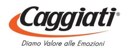 Bronza.eu Logo