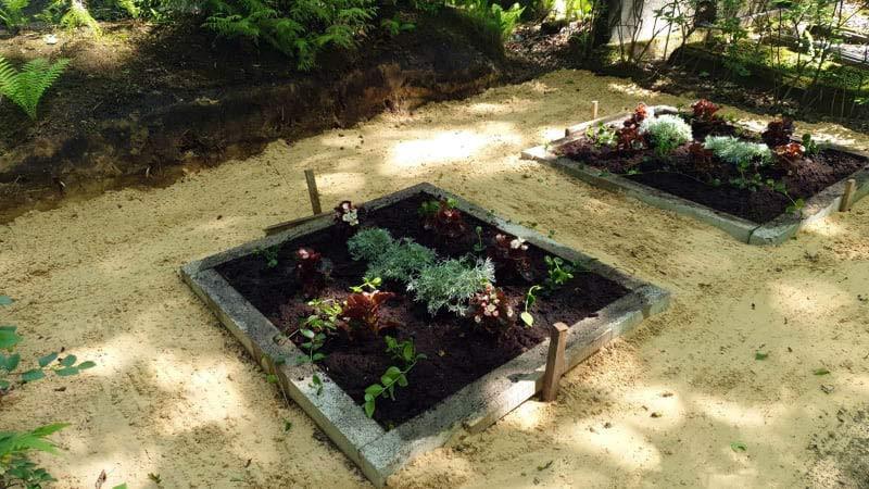 Kapavieta pēc labiekārtošanos kapos