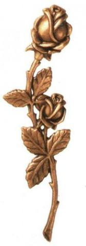 Rozes no bronzas